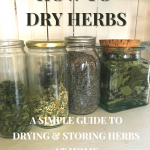 Four jars of dried herbs on a white beadboard pantry shelf