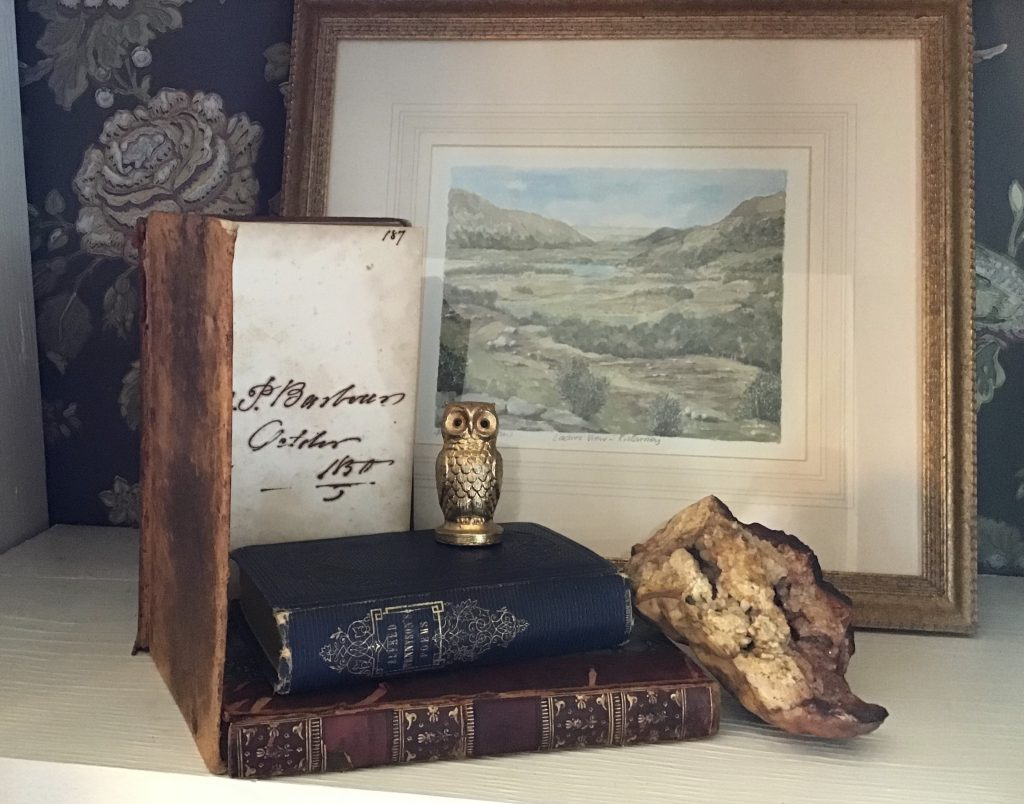 Bookshelf vignette featuring thrifted treasures