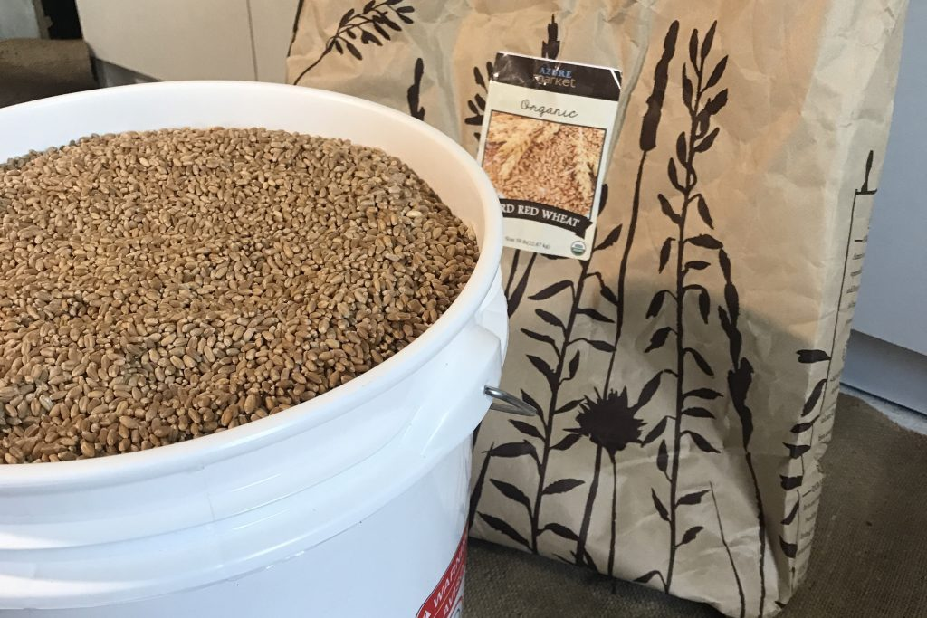 store wheat in a five gallon bucket