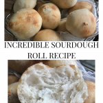 sourdough rolls in a sourdough roll recipe