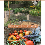 what you need for a garden