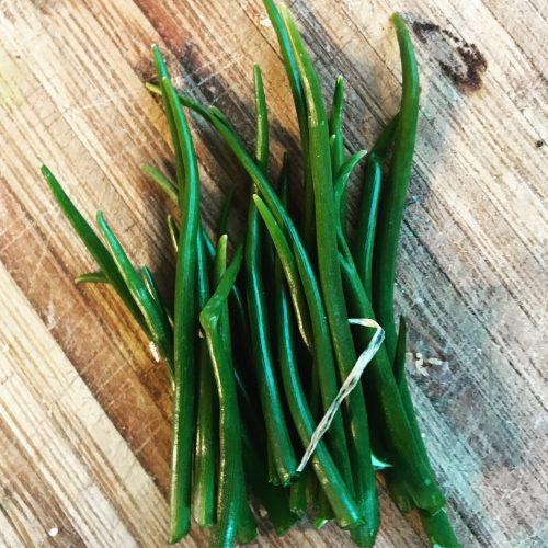 Market Garden - Fresh herbs in Louisville